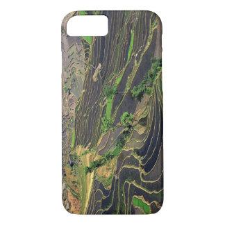 Asia, China, Yunnan, Honghe. Rice Terraces near iPhone 8/7 Case