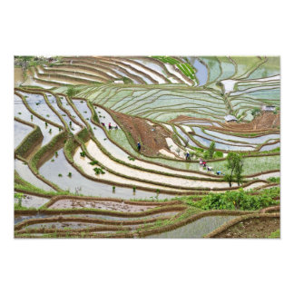 Asia, China, Yunnan, Jinping. Native Yi people Photo Print