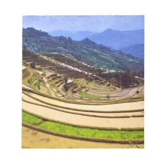 Asia, China, Yunnan Province, Yuanyang County. Notepad