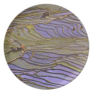 Asia, China, Yunnan Province, Yuanyang. Flooded Plate