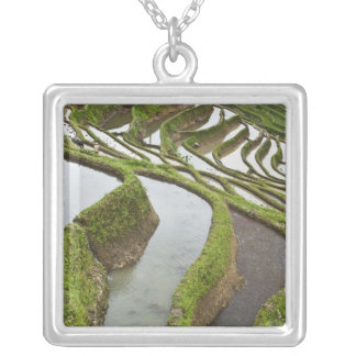 Asia, China, Yunnan, Yuanyang. Flooded rice Silver Plated Necklace