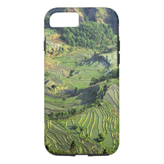 Asia, China, Yunnan, Yuanyang. Pattern of green iPhone 7 Case