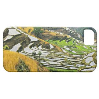 Asia, China, Yunnan, Yuxi Prefecture; Yuanjiang. iPhone 5 Cover