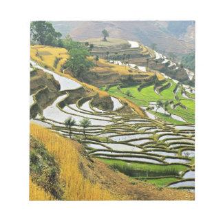 Asia, China, Yunnan, Yuxi Prefecture; Yuanjiang. Notepad