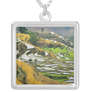 Asia, China, Yunnan, Yuxi Prefecture; Yuanjiang. Silver Plated Necklace
