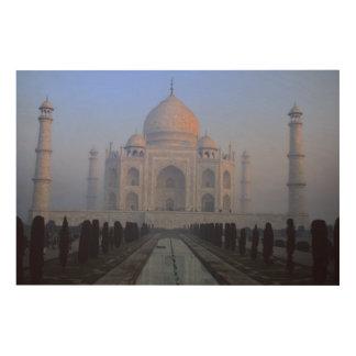 Asia; India; Agra. Taj Mahal. Wood Wall Art