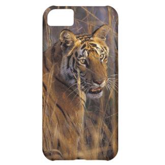 Asia, India, Bandhavgarth National Park, A iPhone 5C Case