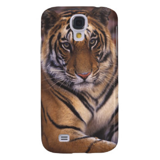Asia, India, Bandhavgarth National Park, Galaxy S4 Case