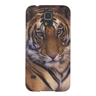 Asia, India, Bandhavgarth National Park, Galaxy S5 Case