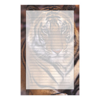 Asia, India, Bandhavgarth National Park, Personalized Stationery