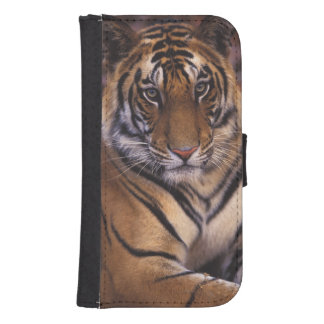 Asia, India, Bandhavgarth National Park, Samsung S4 Wallet Case