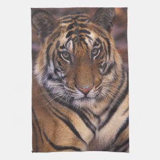 Asia, India, Bandhavgarth National Park, Tea Towel
