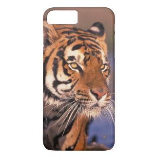 Asia, India, Bengal tiger Panthera tigris); iPhone 8 Plus/7 Plus Case