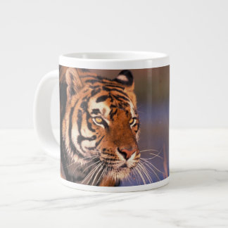 Asia, India, Bengal tiger Panthera tigris); Large Coffee Mug