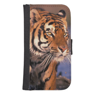 Asia, India, Bengal tiger Panthera tigris); Samsung S4 Wallet Case