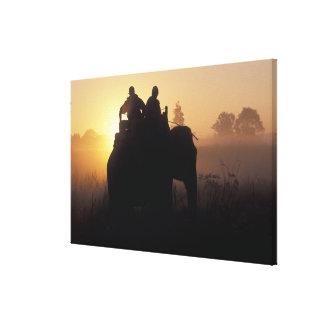 Asia, India, Kanha NP, Elephant safari Stretched Canvas Print