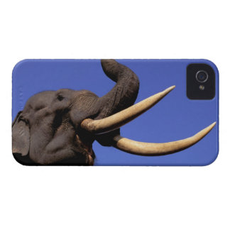 Asia, India, Kaziranga National Park, Assam. iPhone 4 Case-Mate Cases