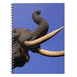 Asia, India, Kaziranga National Park, Assam. Notebook