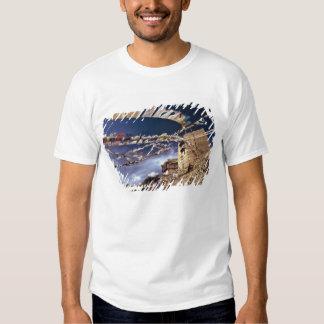 Asia, India, Ladakh, Leh. Known as Little Shirts