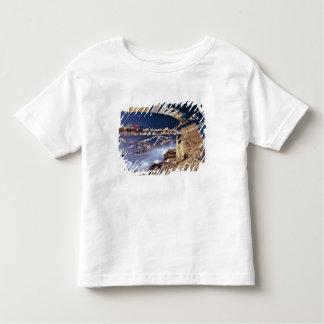 Asia, India, Ladakh, Leh. Known as Little Tshirt
