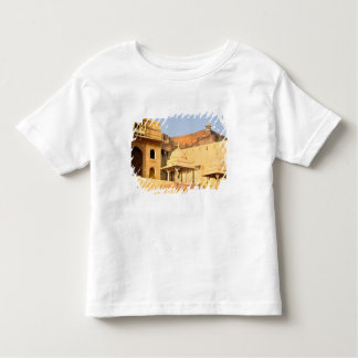 Asia, India, Rajasthan, Amber Amer). The Toddler T-Shirt