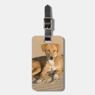 Asia, India, Rajasthan, Jaisalmer, Thar Luggage Tag