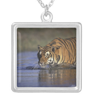 ASIA, India Tiger walking through the water 2 Silver Plated Necklace