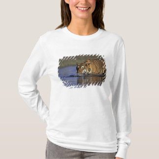 ASIA, India Tiger walking through the water 2 T-Shirt