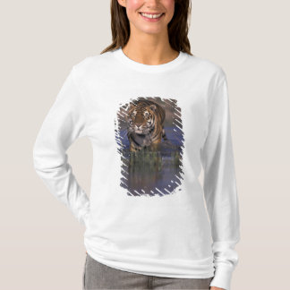 ASIA, India Tiger walking through the water T-Shirt