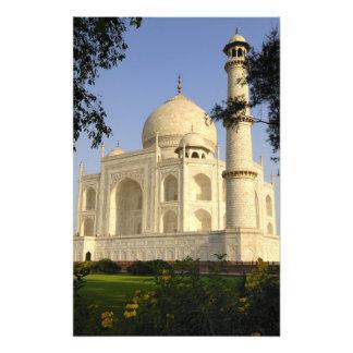Asia, India, Uttar Pradesh, Agra. The Taj 2 Art Photo