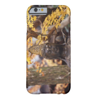 Asia, Japan, Buddha Barely There iPhone 6 Case