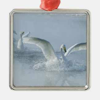 Asia, Japan, Hokkaido, Akan NP, Kussharo Lake, Christmas Ornament