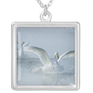 Asia, Japan, Hokkaido, Akan NP, Kussharo Lake, Silver Plated Necklace