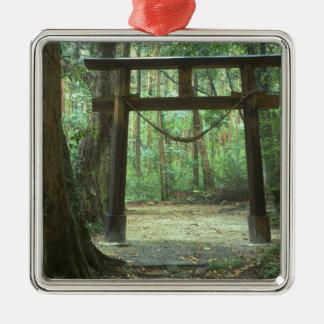 Asia, Japan, Kagoshima, Yakushima, Mountain Silver-Colored Square Decoration