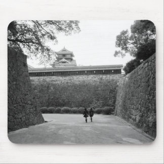 Asia, Japan, Kumamoto. Main walkway and moat, Mouse Mat