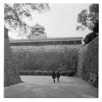 Asia, Japan, Kumamoto. Main walkway and moat, Tile