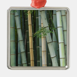 Asia, Japan, Kyoto, Arashiyama, Sagano, Bamboo Silver-Colored Square Decoration