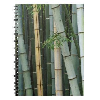 Asia, Japan, Kyoto, Arashiyama, Sagano, Bamboo Spiral Notebook