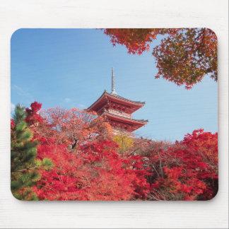Asia, Japan, Kyoto. Autumn Colour Mouse Mat