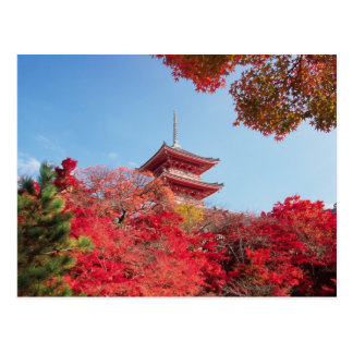 Asia, Japan, Kyoto. Autumn Colour Postcard