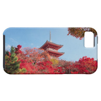 Asia, Japan, Kyoto. Autumn Colour Tough iPhone 5 Case