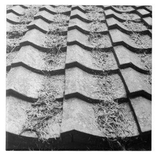 Asia, Japan, Miyajima. Clay roof detail Tile