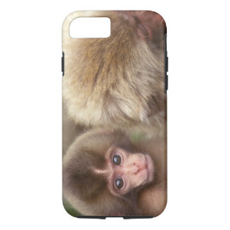 Asia, Japan, Nagano, Jigokudani, Snow Monkey 2 iPhone 8/7 Case