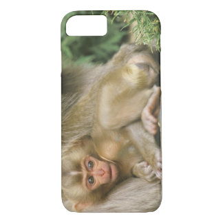 Asia, Japan, Nagano, Jigokudani, Snow Monkey 4 iPhone 8/7 Case