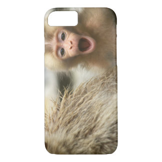 Asia, Japan, Nagano, Jigokudani, Snow Monkey iPhone 8/7 Case