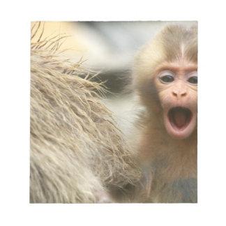 Asia, Japan, Nagano, Jigokudani, Snow Monkey Notepad