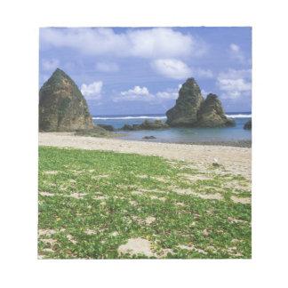 Asia, Japan, Okinawa, Yambaru Coastline, Sea Notepad