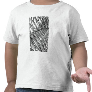 Asia, Japan, Tokyo. Coiled pipe, Tepco Energy Tee Shirt