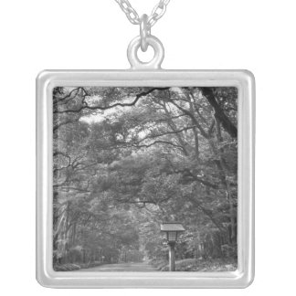 Asia, Japan, Tokyo, Grounds of Meiji Shrine, Silver Plated Necklace