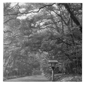 Asia, Japan, Tokyo, Grounds of Meiji Shrine, Tile